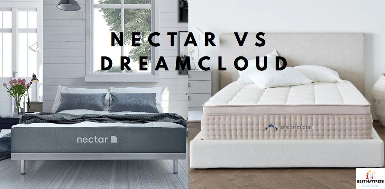 nectar vs dreamcloud
