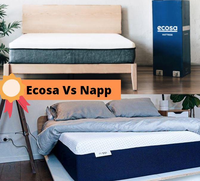 Ecosa Vs Napp - Cover Image 2021