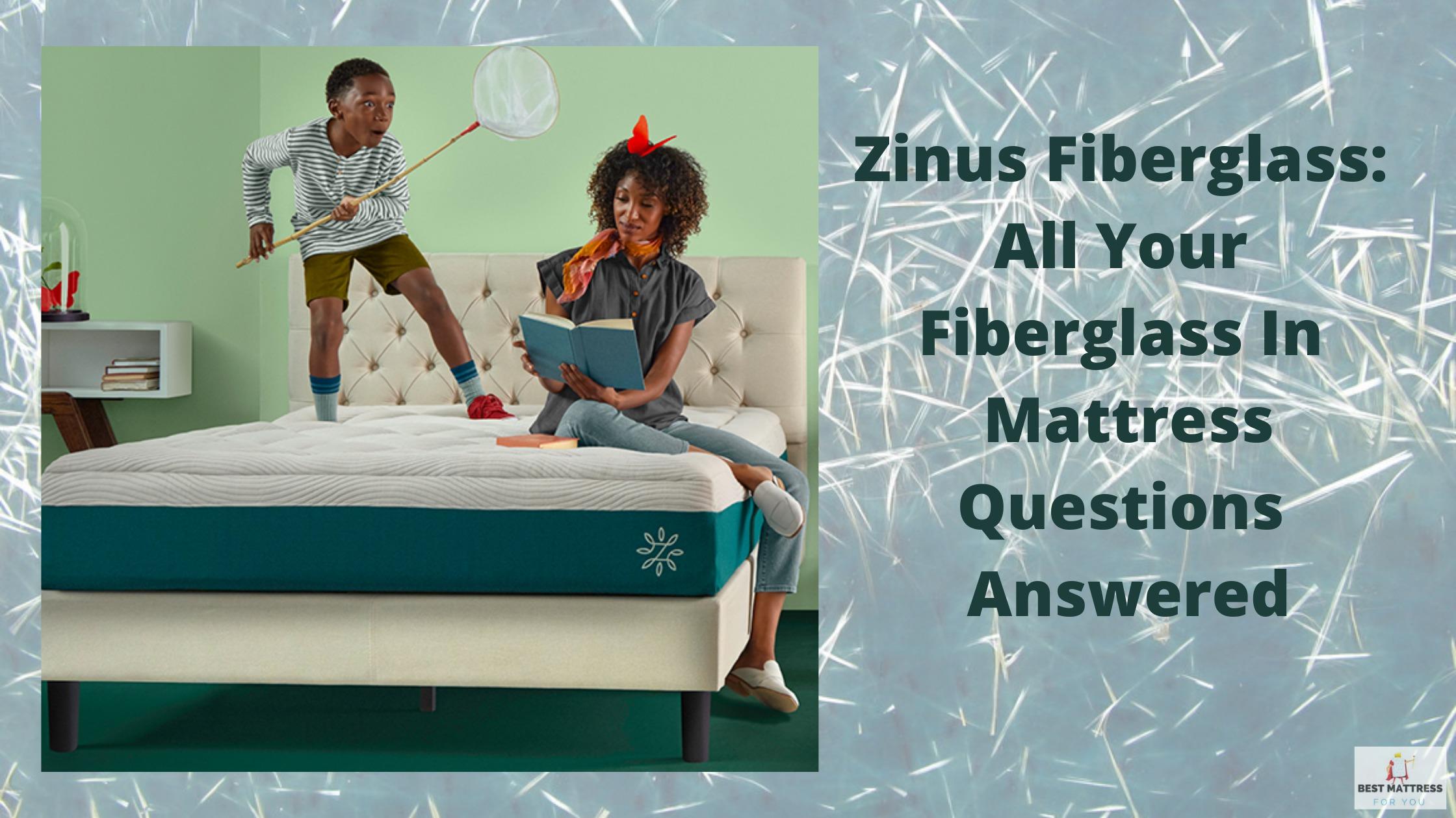 Zinus Fiberglass: Cover Image