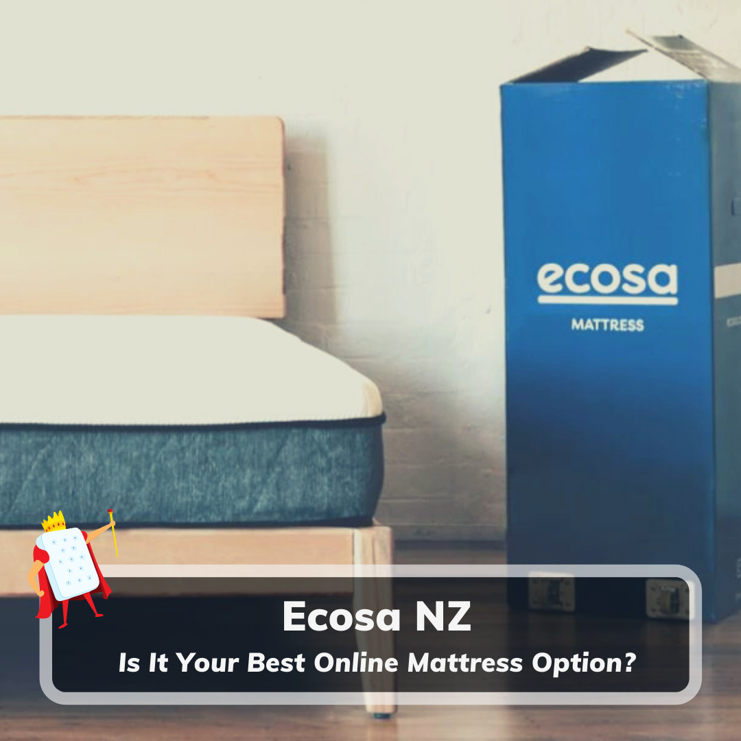 Ecosa NZ - Feature Image