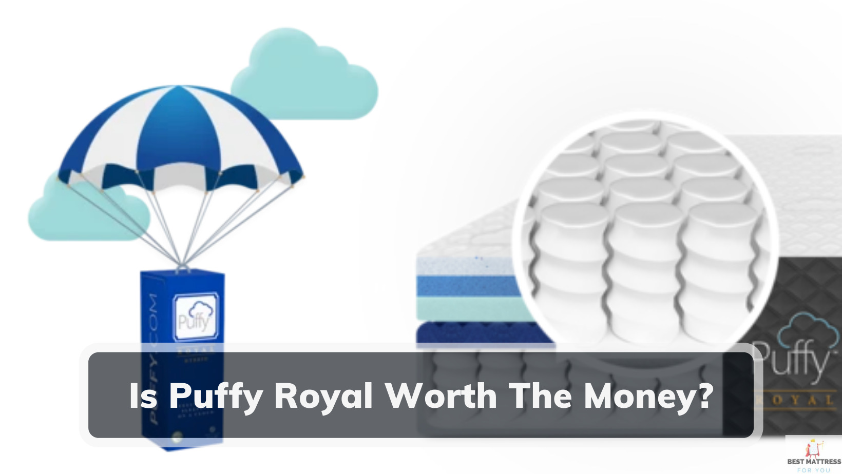 Is Puffy Royal Worth The Money?- Cover Image